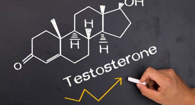 Testosterone Impact On Performance In Business